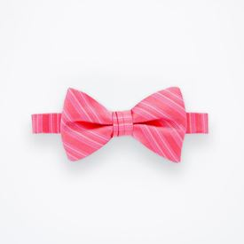 Petunia Striped Bow Tie
